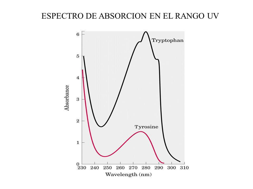 ESPECTRO DE ABSORCION EN EL RANGO UV
