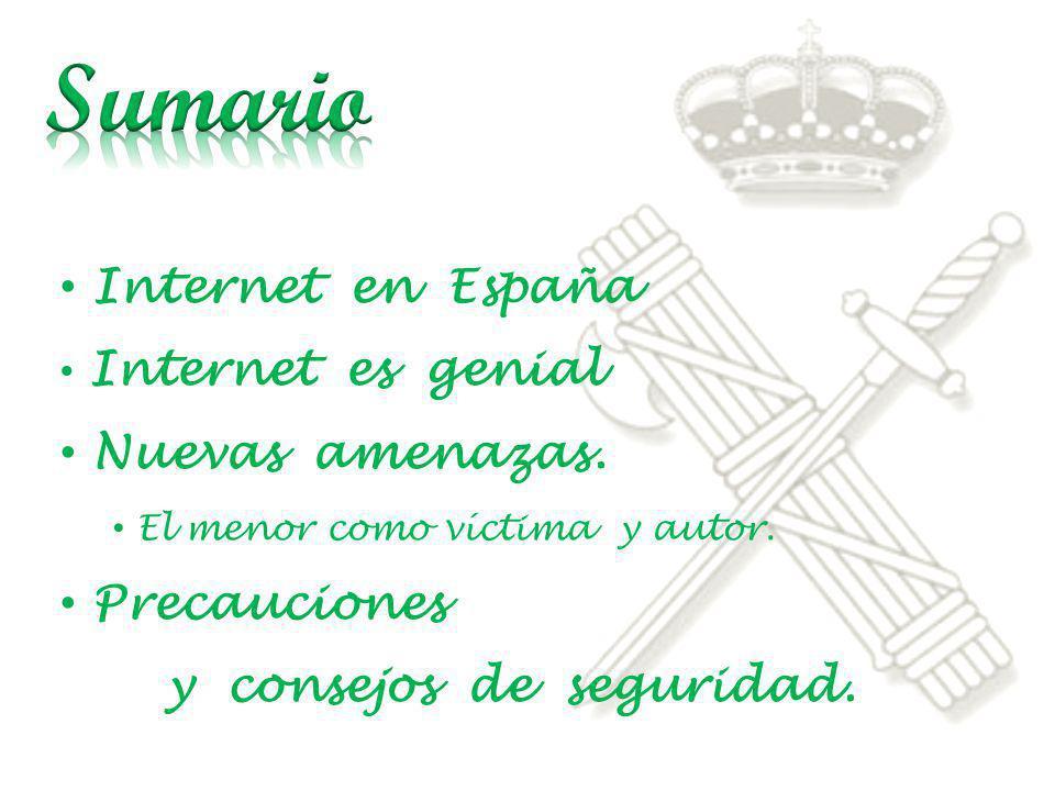Internet en España Internet es genial Nuevas amenazas. El menor como víctima y autor. Precauciones y consejos de seguridad.