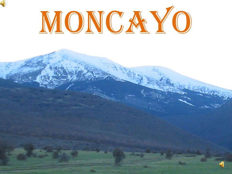 SISTEMA IBÉRICO: Se sitúa al nordeste de la Meseta. El Moncayo es su máxima altura.