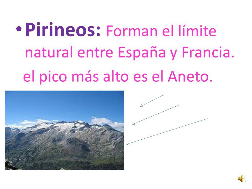 MONTES VASCOS: Se hallan entre la Cordillera Cantábrica y los Pirineos. La máxima altura es el Aitxurri.