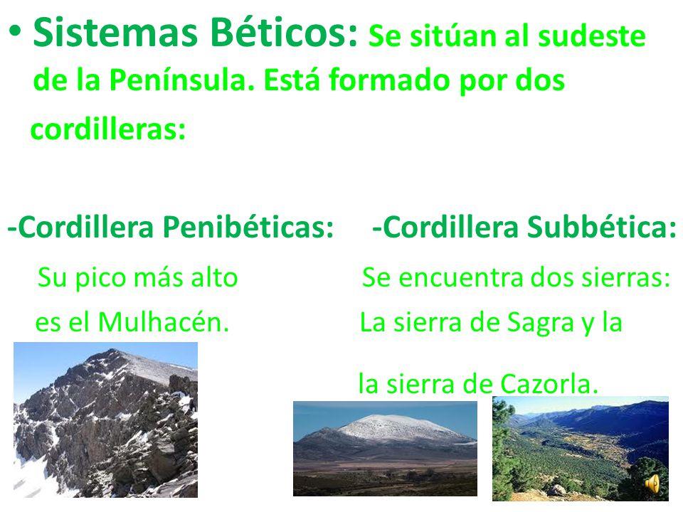 Cordillera Costera Catalana: Se encuentra al noroeste de la Península. Su pico más alto es el Turó de L`Home.