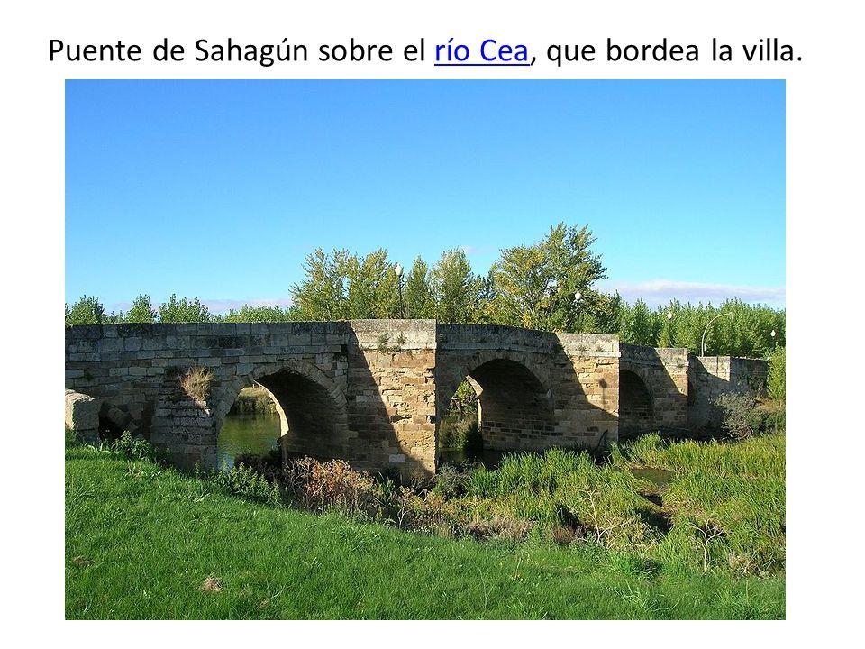 Puente de Sahagún sobre el río Cea, que bordea la villa.río Cea