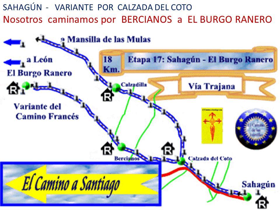 SAHAGÚN - VARIANTE POR CALZADA DEL COTO Nosotros caminamos por BERCIANOS a EL BURGO RANERO