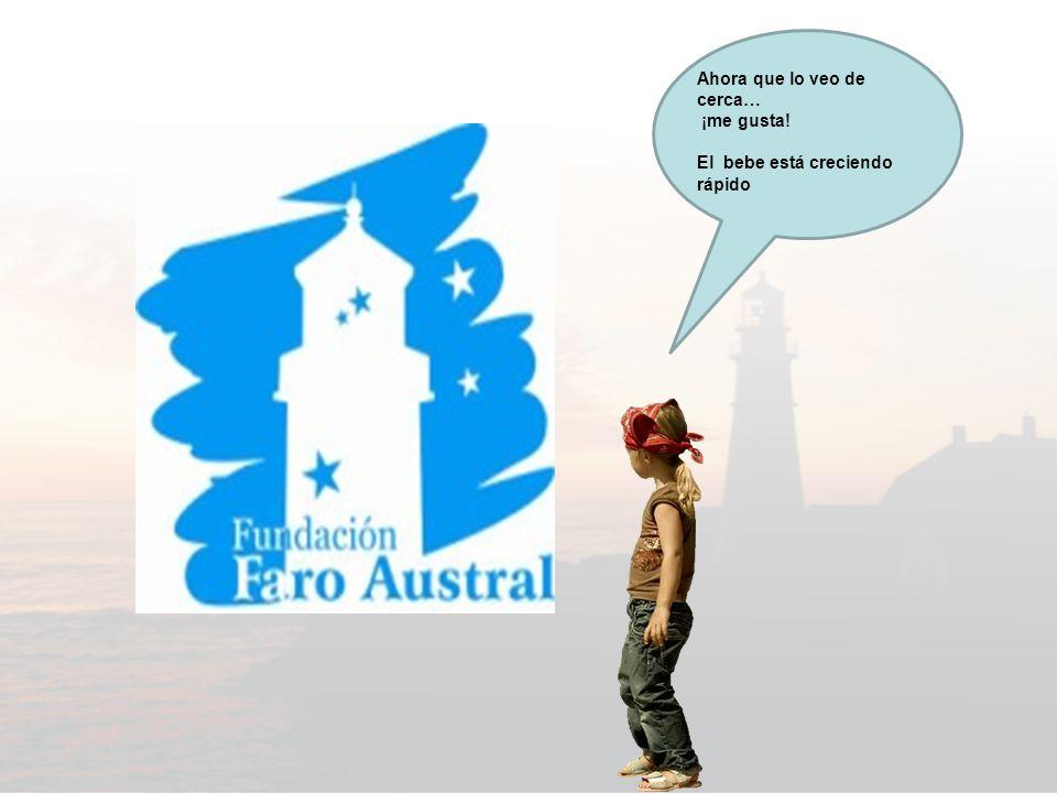 Si quieren ponerse en contacto con la Fundación Faro austral tomen nota… FUNDACION FARO AUSTRAL Matricula DPJ 36084 Dirección Postal: Rodríguez Peña, 2200.