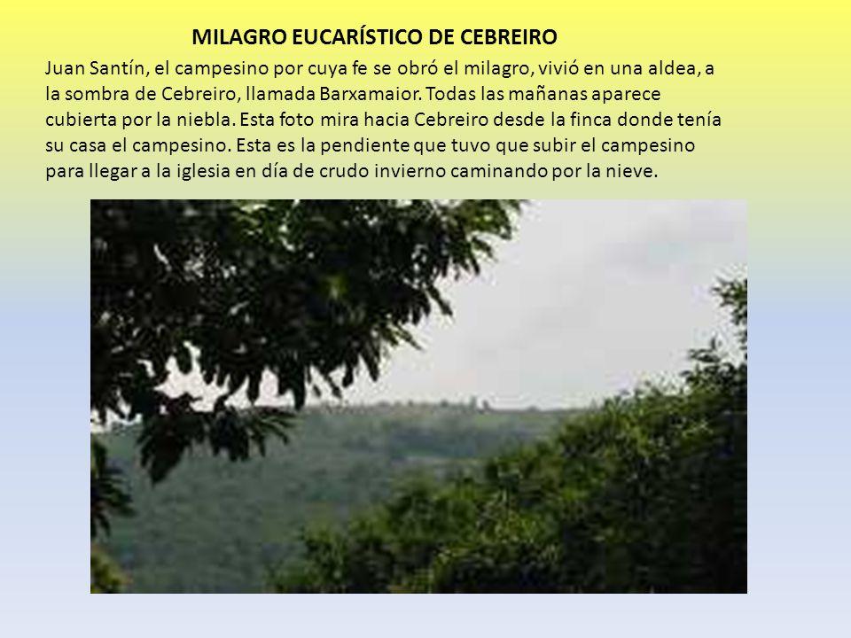 MILAGRO EUCARÍSTICO DE CEBREIRO Juan Santín, el campesino por cuya fe se obró el milagro, vivió en una aldea, a la sombra de Cebreiro, llamada Barxama