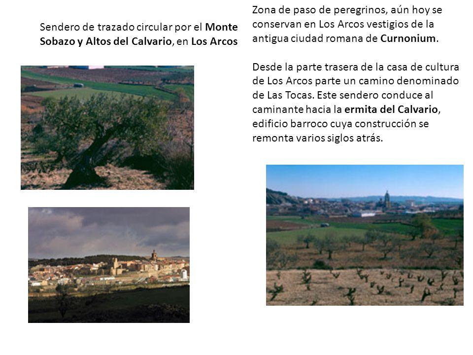 Sendero de trazado circular por el Monte Sobazo y Altos del Calvario, en Los Arcos Zona de paso de peregrinos, aún hoy se conservan en Los Arcos vestigios de la antigua ciudad romana de Curnonium.