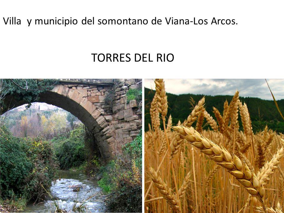 Villa y municipio del somontano de Viana-Los Arcos. TORRES DEL RIO