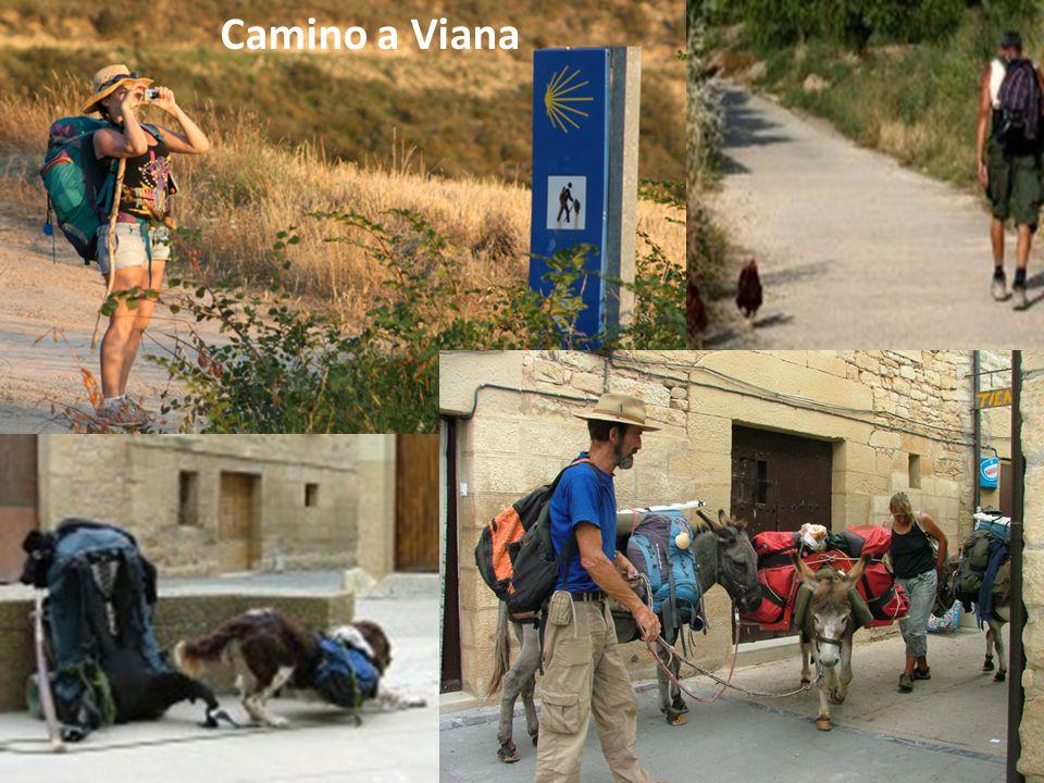 Camino a Viana
