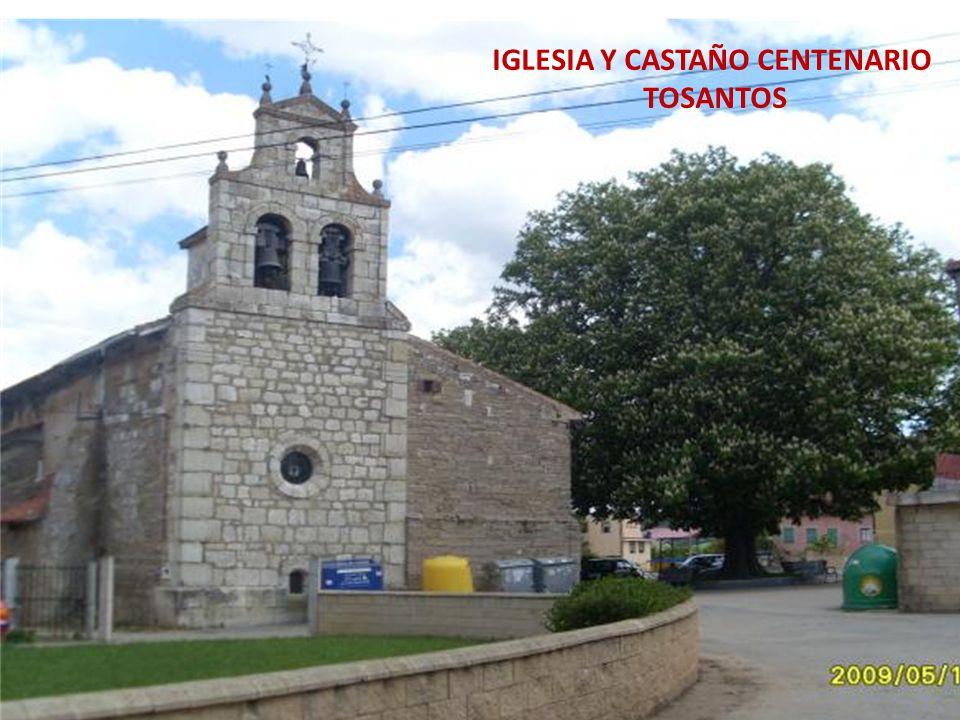IGLESIA Y CASTAÑO CENTENARIO TOSANTOS