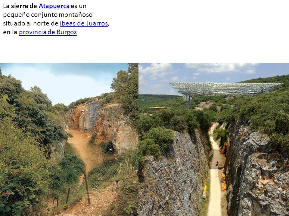 La sierra de Atapuerca es un pequeño conjunto montañoso situado al norte de Ibeas de Juarros, en la provincia de Burgos AtapuercaIbeas de Juarrosprovi