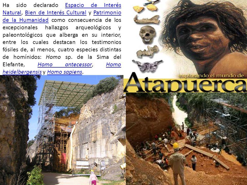 Ha sido declarado Espacio de Interés Natural, Bien de Interés Cultural y Patrimonio de la Humanidad como consecuencia de los excepcionales hallazgos a