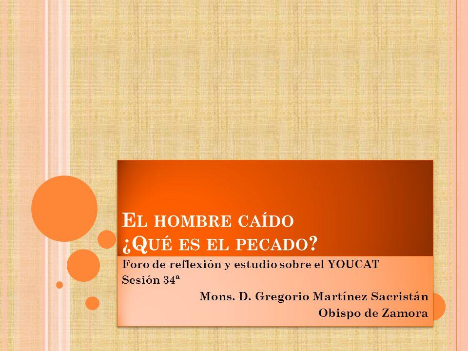 E L HOMBRE CAÍDO ¿Q UÉ ES EL PECADO ? Foro de reflexión y estudio sobre el YOUCAT Sesión 34ª Mons. D. Gregorio Martínez Sacristán Obispo de Zamora For