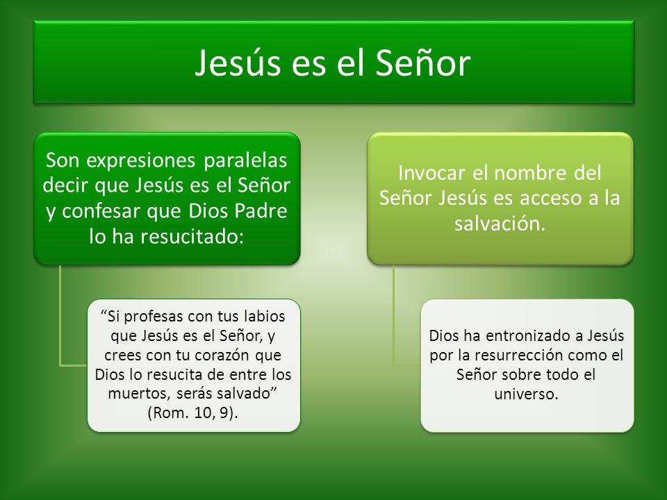 Jesús es el Señor Son expresiones paralelas decir que Jesús es el Señor y confesar que Dios Padre lo ha resucitado: Si profesas con tus labios que Jes