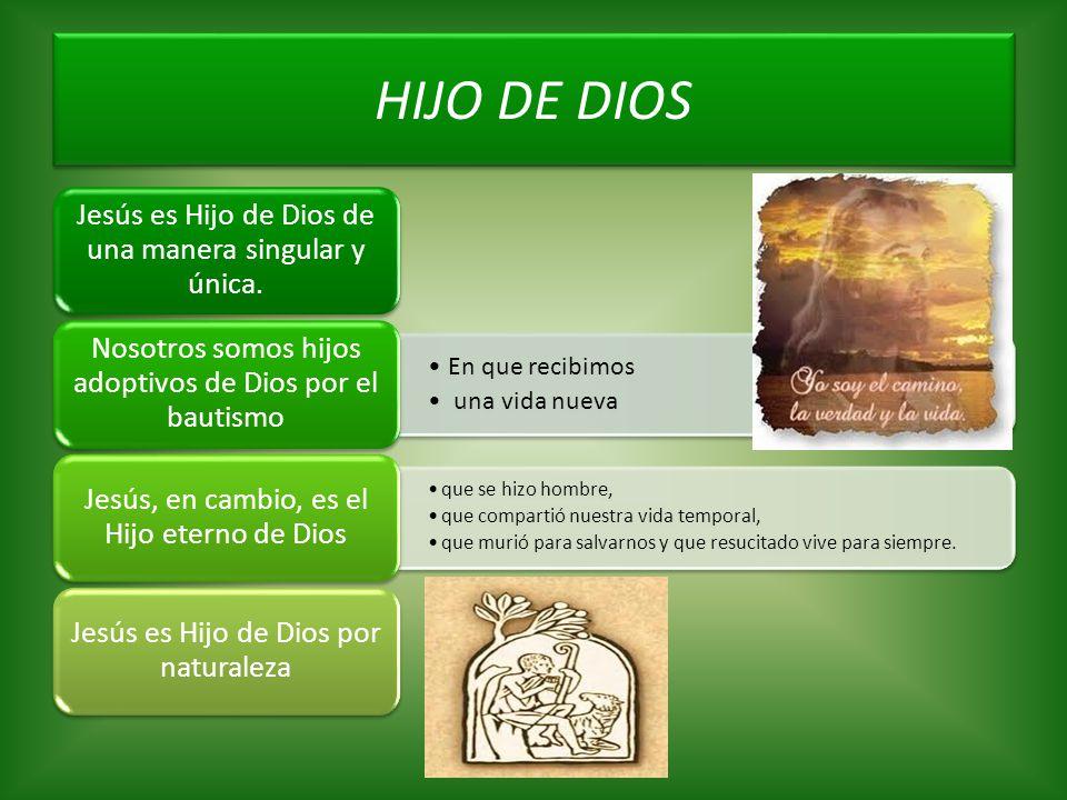 HIJO DE DIOS Jesús es Hijo de Dios de una manera singular y única. En que recibimos una vida nueva Nosotros somos hijos adoptivos de Dios por el bauti