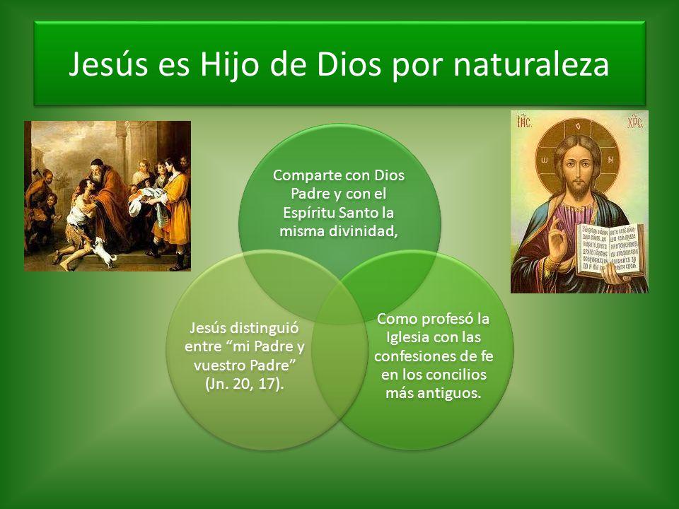 Comparte con Dios Padre y con el Espíritu Santo la misma divinidad, Como profesó la Iglesia con las confesiones de fe en los concilios más antiguos. J