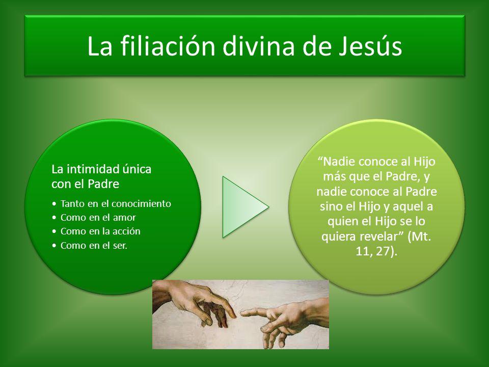 La filiación divina de Jesús La intimidad única con el Padre Tanto en el conocimiento Como en el amor Como en la acción Como en el ser. Nadie conoce a