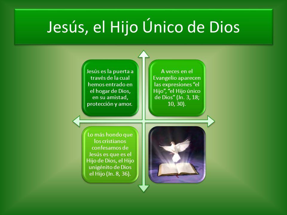 Jesús, el Hijo Único de Dios Jesús es la puerta a través de la cual hemos entrado en el hogar de Dios, en su amistad, protección y amor. A veces en el