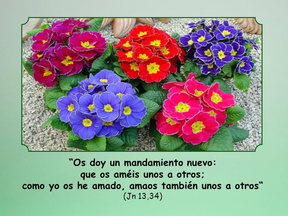 Si lo que dice un padre antes de morir es algo que nunca se olvida, ¿qué ocurrirá con las palabras de un Dios? Así pues, tómatelas muy en serio y trat