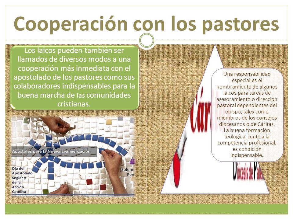 Cooperación con los pastores Los laicos pueden también ser llamados de diversos modos a una cooperación más inmediata con el apostolado de los pastore