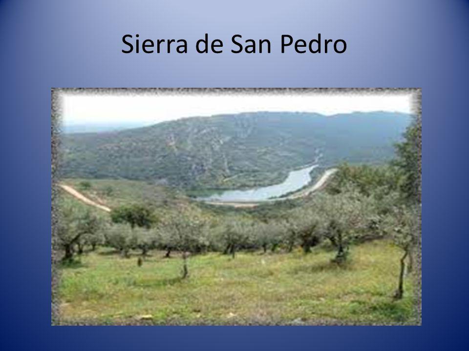 Montes de Toledo que están formados por: