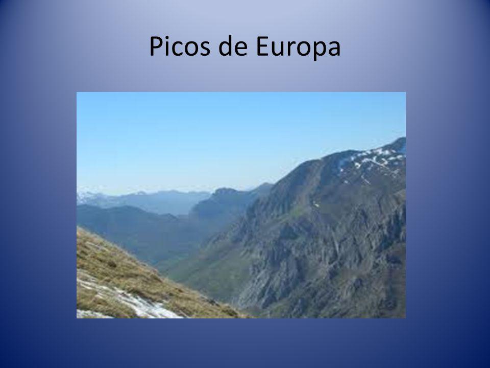Cordillera Cantábrica que está formada por montañas como: