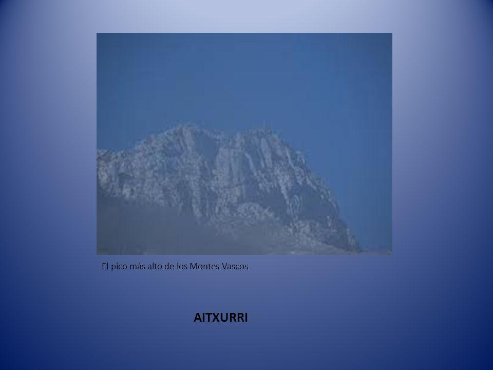 Montes Vascos que está formado por: