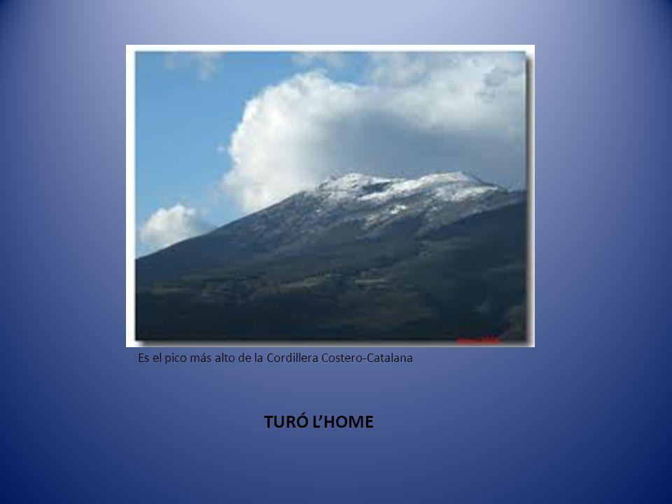 Sierra Montseny