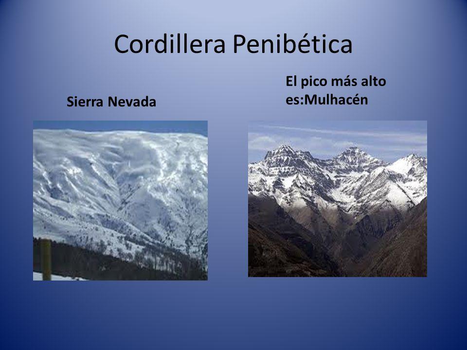 Sistemas Béticos que están formados por: Cordillera PenibéticaCordillera Subbética