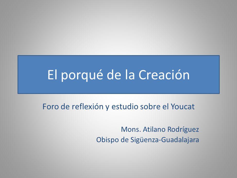 El porqué de la Creación Foro de reflexión y estudio sobre el Youcat Mons. Atilano Rodríguez Obispo de Sigüenza-Guadalajara