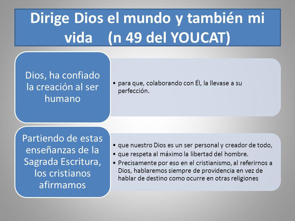 Dirige Dios el mundo y también mi vida (n 49 del YOUCAT) para que, colaborando con Él, la llevase a su perfección. Dios, ha confiado la creación al se