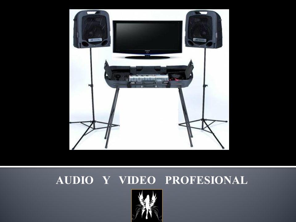 AUDIO Y VIDEO PROFESIONAL