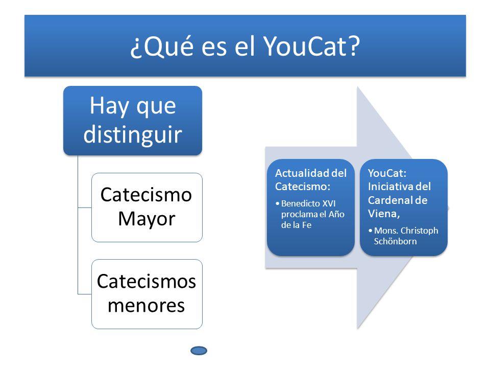 ¿Qué es el YouCat.