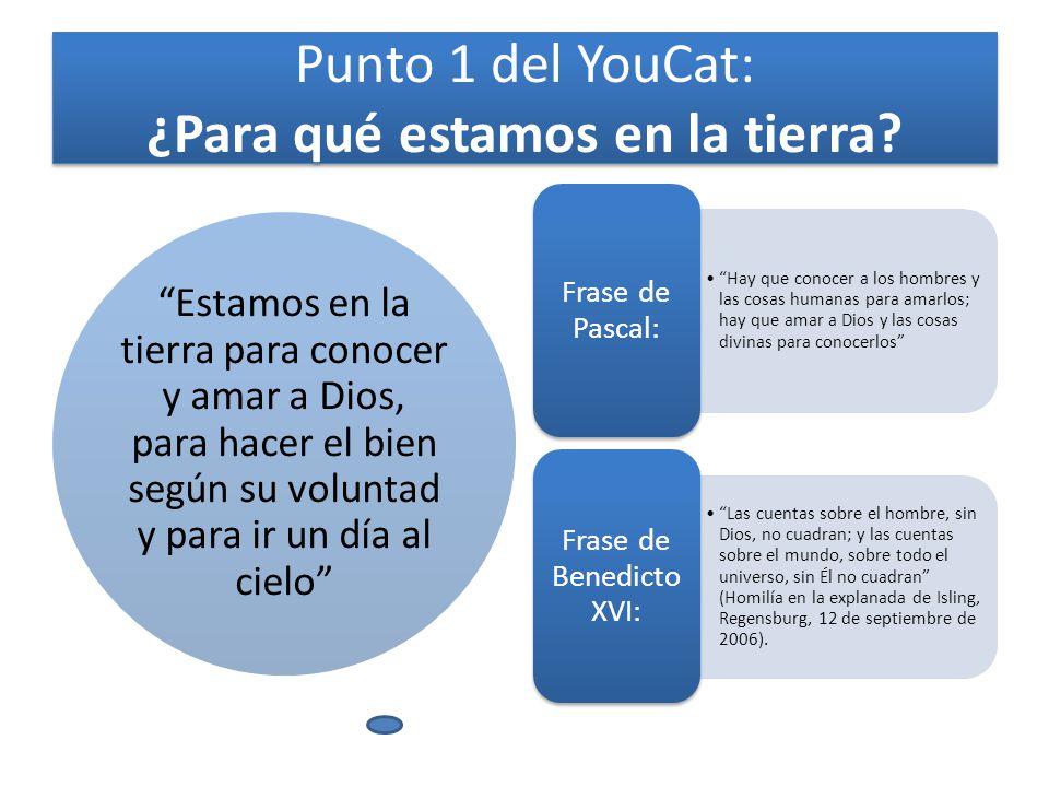 Punto 1 del YouCat: ¿Para qué estamos en la tierra.