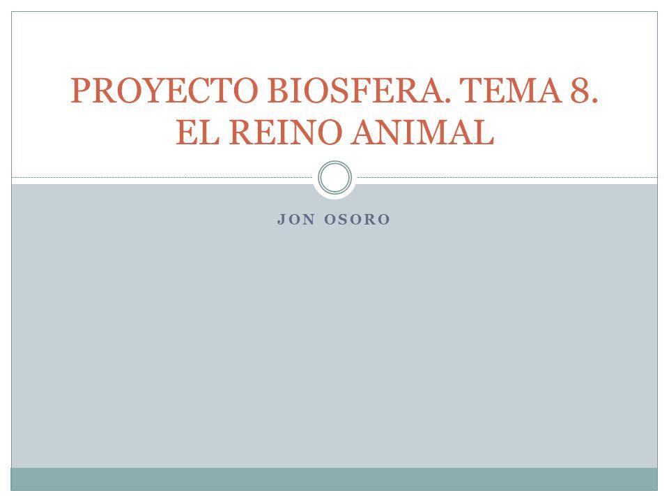 JON OSORO PROYECTO BIOSFERA. TEMA 8. EL REINO ANIMAL