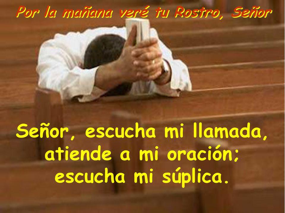 Señor, escucha mi llamada, atiende a mi oración; escucha mi súplica.