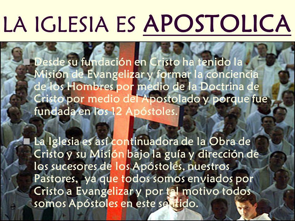 LA IGLESIA ES APOSTOLICA Desde su fundación en Cristo ha tenido la Misión de Evangelizar y formar la conciencia de los Hombres por medio de la Doctrina de Cristo por medio del Apostolado y porque fue fundada en los 12 Apóstoles.