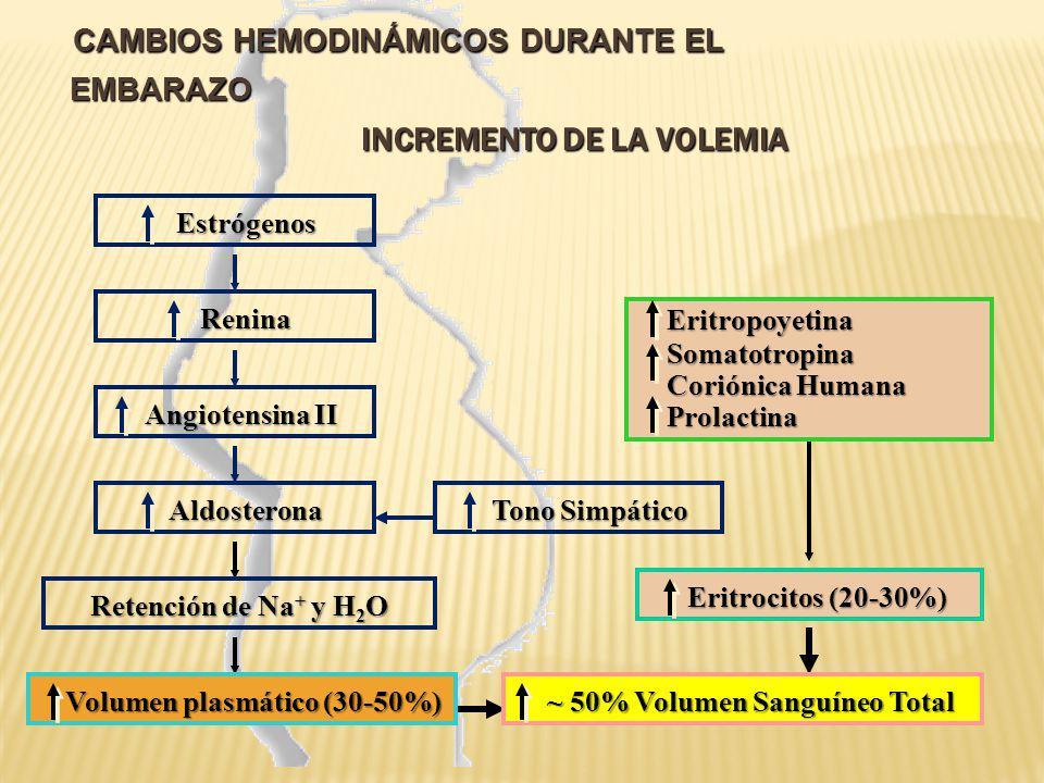 CAMBIOS HEMODINÁMICOS DURANTE EL EMBARAZO REDUCCIÓN DE LA RESISTENCIA VASCULAR SISTÉMICA CAMBIOS HEMODINÁMICOS DURANTE EL EMBARAZO REDUCCIÓN DE LA RESISTENCIA VASCULAR SISTÉMICA Estrógenos, PG Estrógenos, PG Producción de calor Circulación Placentaria de baja Resistencia Vasodilatación Vasodilatación + Resistencia Vascular sistémica Resistencia Vascular sistémica