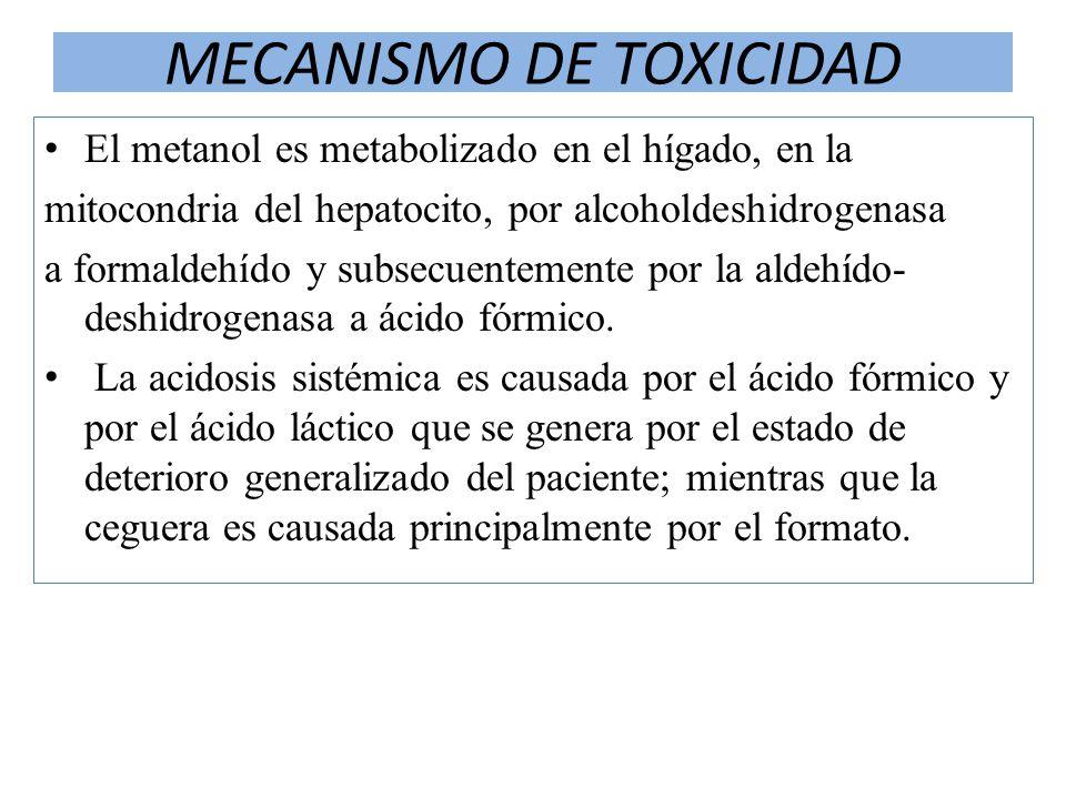 MECANISMO DE TOXICIDAD El metanol es metabolizado en el hígado, en la mitocondria del hepatocito, por alcoholdeshidrogenasa a formaldehído y subsecuen