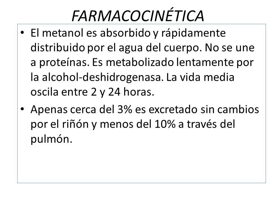 FARMACOCINÉTICA El metanol es absorbido y rápidamente distribuido por el agua del cuerpo. No se une a proteínas. Es metabolizado lentamente por la alc