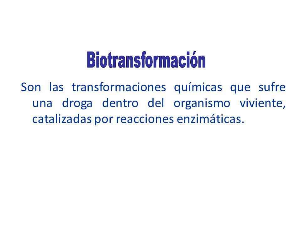 Son las transformaciones químicas que sufre una droga dentro del organismo viviente, catalizadas por reacciones enzimáticas.