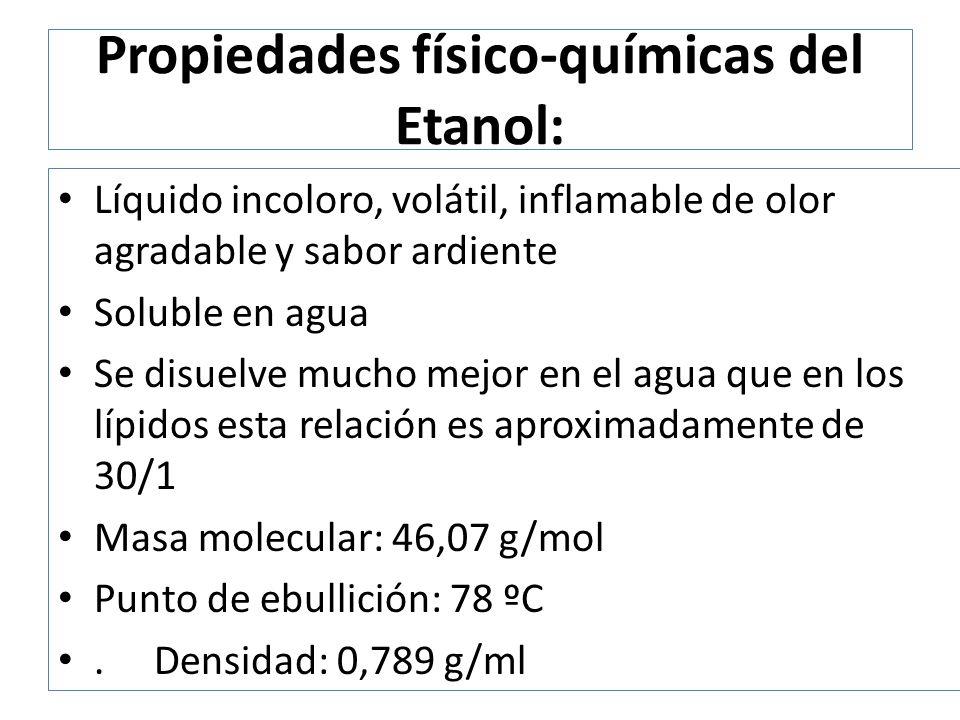 Farmacocinética del Etanol Vias de ingreso: – Oral – Inhalatoria Absorción: – 20% estómago – 80% intestino delgado Distribución: Se distribuye ampliamente en tejidos ricos en agua Atraviesa barrera hematoencefálica Atraviesa barrera placentaria 0.7 L/kg en hombres respecto a 0.6 L/kg en mujeres Metabolismo y eliminación 95% es metabolizado a CO 2 Respiración y orina 5%