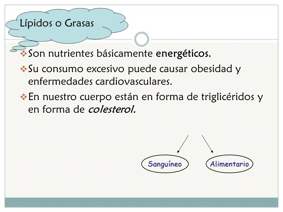 Lípidos o Grasas Son nutrientes básicamente energéticos.