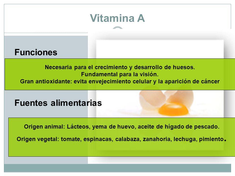 Vitamina A Funciones Fuentes alimentarias Necesaria para el crecimiento y desarrollo de huesos.