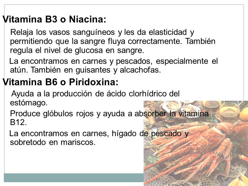 Vitamina B3 o Niacina: Relaja los vasos sanguíneos y les da elasticidad y permitiendo que la sangre fluya correctamente.