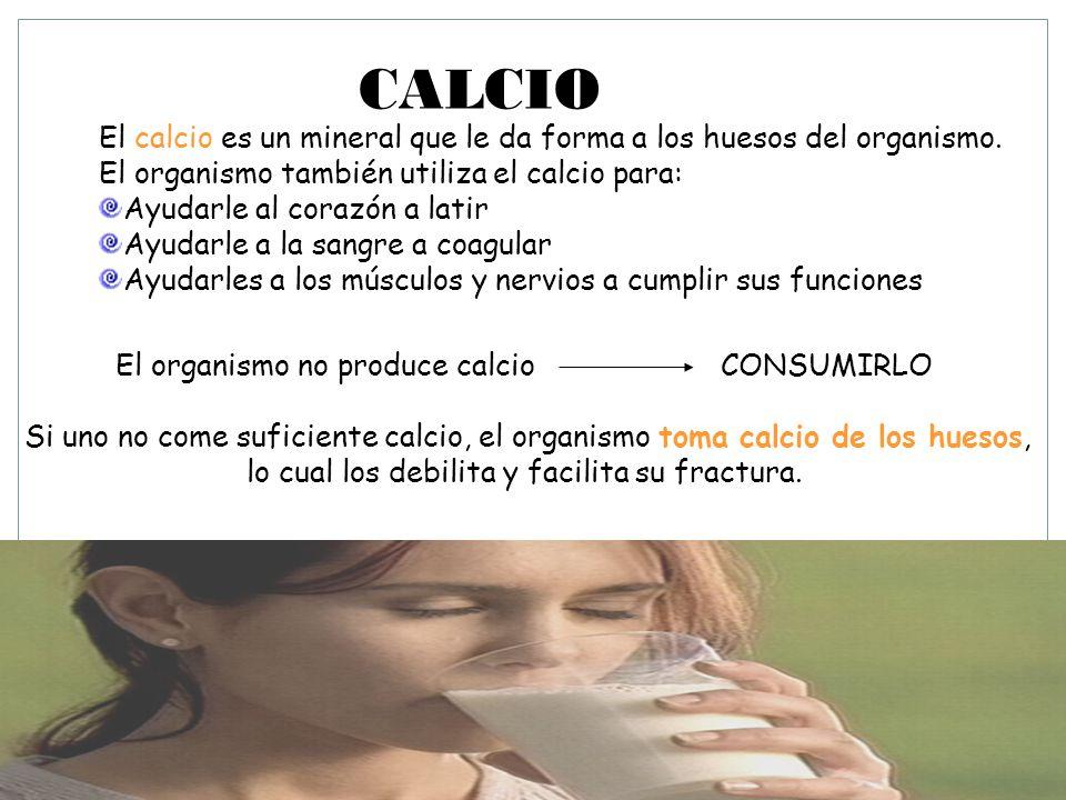 CALCIO El calcio es un mineral que le da forma a los huesos del organismo.