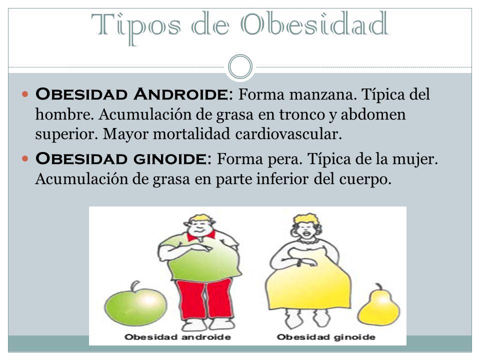 Tipos de Obesidad Obesidad Androide : Forma manzana.