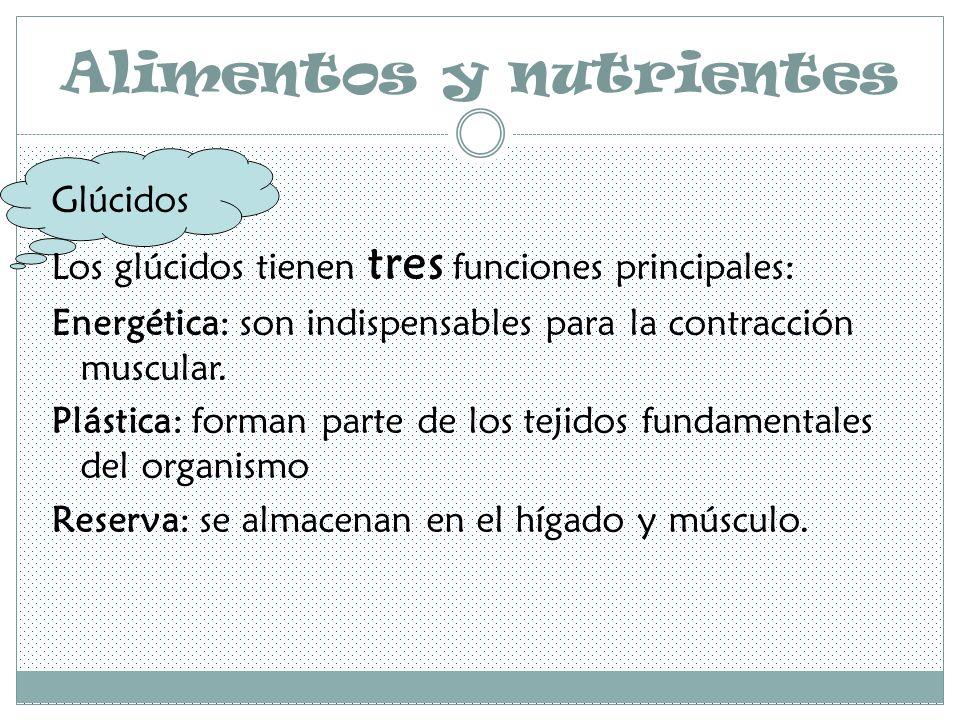 Alimentos y nutrientes Glúcidos Los glúcidos tienen tres funciones principales: Energética: son indispensables para la contracción muscular.