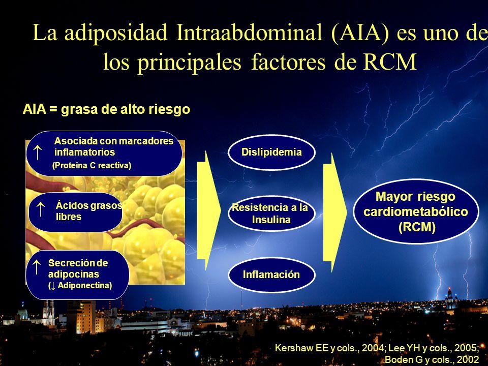 OBESIDAD Y CORAZON La adiposidad Intraabdominal (AIA) es uno de los principales factores de RCM Kershaw EE y cols., 2004; Lee YH y cols., 2005; Boden