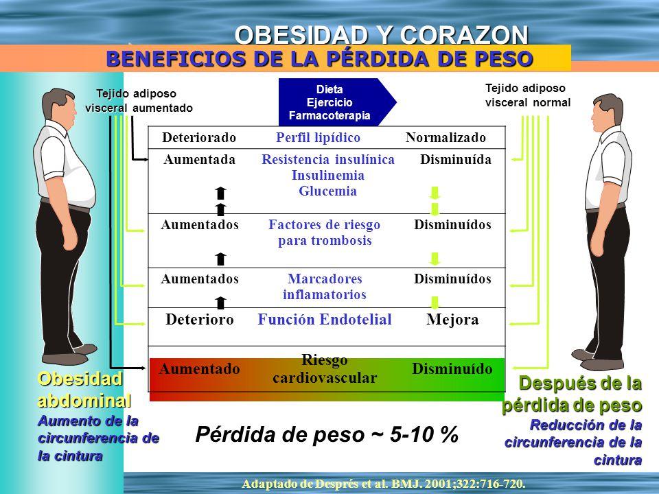 OBESIDAD Y CORAZON Adaptado de Després et al. BMJ. 2001;322:716-720. Dieta Ejercicio Farmacoterapia Obesidadabdominal Aumento de la circunferencia de