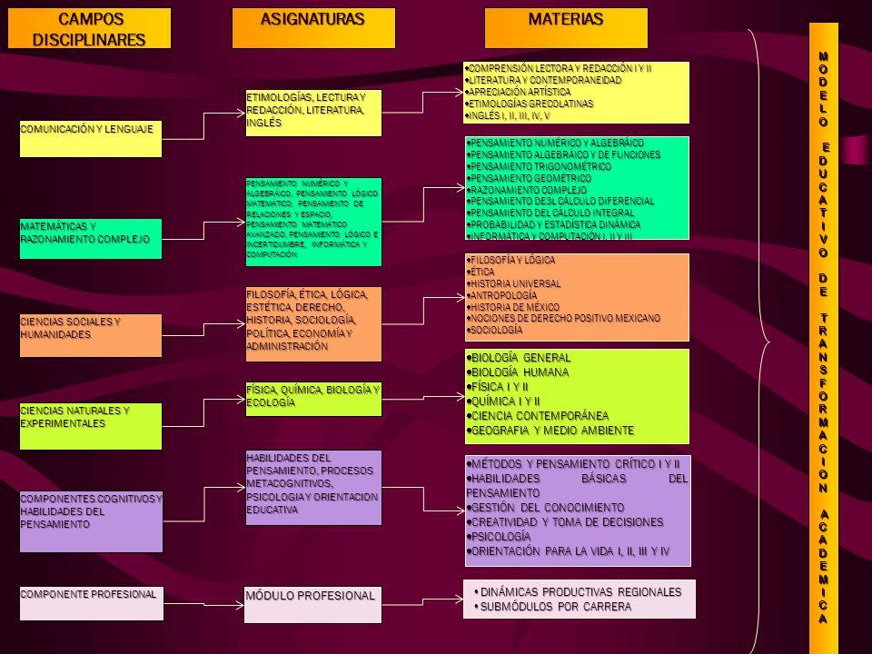 CAMPOS DISCIPLINARES CAMPOS DISCIPLINARES COMUNICACIÓN Y LENGUAJE COMPONENTES COGNITIVOS Y HABILIDADES DEL PENSAMIENTO MATEMÁTICAS Y RAZONAMIENTO COMPLEJO CIENCIAS SOCIALES Y HUMANIDADES CIENCIAS NATURALES Y EXPERIMENTALES COMPRENSIÓN LECTORA Y REDACCIÓN I Y II COMPRENSIÓN LECTORA Y REDACCIÓN I Y II LITERATURA Y CONTEMPORANEIDAD LITERATURA Y CONTEMPORANEIDAD APRECIACIÓN ARTÍSTICA APRECIACIÓN ARTÍSTICA ETIMOLOGÍAS GRECOLATINAS ETIMOLOGÍAS GRECOLATINAS INGLÉS I, II, III, IV, V INGLÉS I, II, III, IV, V MÉTODOS Y PENSAMIENTO CRÍTICO I Y II MÉTODOS Y PENSAMIENTO CRÍTICO I Y II HABILIDADES BÁSICAS DEL PENSAMIENTO HABILIDADES BÁSICAS DEL PENSAMIENTO GESTIÓN DEL CONOCIMIENTO GESTIÓN DEL CONOCIMIENTO CREATIVIDAD Y TOMA DE DECISIONES CREATIVIDAD Y TOMA DE DECISIONES PSICOLOGÍA PSICOLOGÍA ORIENTACIÓN PARA LA VIDA I, II, III Y IV ORIENTACIÓN PARA LA VIDA I, II, III Y IV PENSAMIENTO NUMÉRICO Y ALGEBRÁICO PENSAMIENTO NUMÉRICO Y ALGEBRÁICO PENSAMIENTO ALGEBRÁICO Y DE FUNCIONES PENSAMIENTO ALGEBRÁICO Y DE FUNCIONES PENSAMIENTO TRIGONOMÉTRICO PENSAMIENTO TRIGONOMÉTRICO PENSAMIENTO GEOMÉTRICO PENSAMIENTO GEOMÉTRICO RAZONAMIENTO COMPLEJO RAZONAMIENTO COMPLEJO PENSAMIENTO DE3L CÁLCULO DIFERENCIAL PENSAMIENTO DE3L CÁLCULO DIFERENCIAL PENSAMIENTO DEL CÁLCULO INTEGRAL PENSAMIENTO DEL CÁLCULO INTEGRAL PROBABILIDAD Y ESTADÍSTICA DINÁMICA PROBABILIDAD Y ESTADÍSTICA DINÁMICA INFORMÁTICA Y COMPUTACIÓN I, II Y III INFORMÁTICA Y COMPUTACIÓN I, II Y III FILOSOFÍA Y LÓGICA FILOSOFÍA Y LÓGICA ÉTICA ÉTICA HISTORIA UNIVERSAL HISTORIA UNIVERSAL ANTROPOLOGÍA ANTROPOLOGÍA HISTORIA DE MÉXICO HISTORIA DE MÉXICO NOCIONES DE DERECHO POSITIVO MEXICANO NOCIONES DE DERECHO POSITIVO MEXICANO SOCIOLOGÍA SOCIOLOGÍA BIOLOGÍA GENERAL BIOLOGÍA GENERAL BIOLOGÍA HUMANA BIOLOGÍA HUMANA FÍSICA I Y II FÍSICA I Y II QUÍMICA I Y II QUÍMICA I Y II CIENCIA CONTEMPORÁNEA CIENCIA CONTEMPORÁNEA GEOGRAFIA Y MEDIO AMBIENTE GEOGRAFIA Y MEDIO AMBIENTE COMPONENTE PROFESIONAL DINÁMICAS PRODUCTIVAS REGIONALESDINÁMICAS PRODUCTIVAS REGI